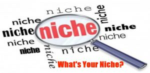 magnifying glass showing the word niche