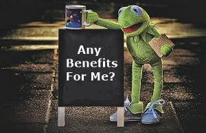 Kermit the frog holding a sandwich and mug standing next to a blackboard with the words any benefits for me written on it