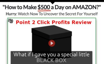 Point 2 Click Profits Website Screenshot