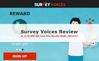 Survey Voices Review Screenshot