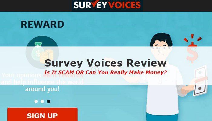Survey Voices Review Screenshot