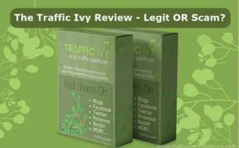 the-traffic-ivy-review